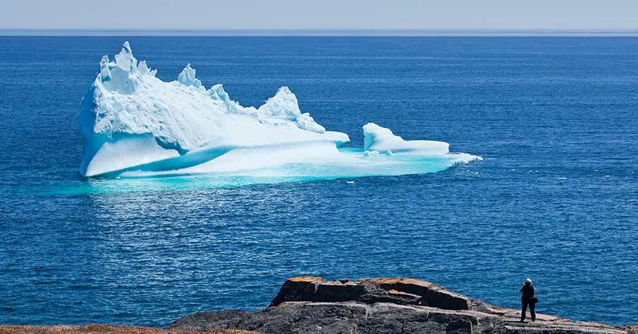 Iceberg Western Bay Avalon